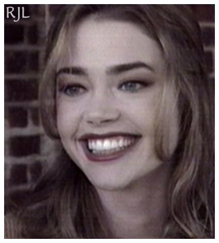 BabeStop - World's Largest Babe Site - denise_richards068.jpg